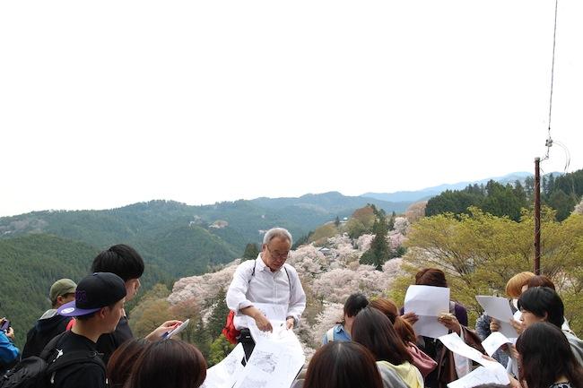下千本を俯瞰しながら、吉野山全体の景観構造についての解説を聞く。