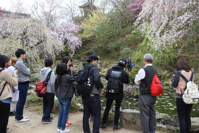 大和三名園の一つである竹林院群芳園を見学。