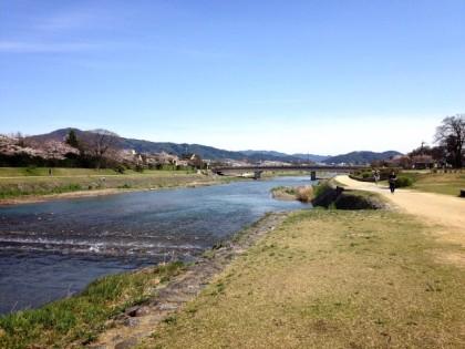 ♪春の鴨川♪