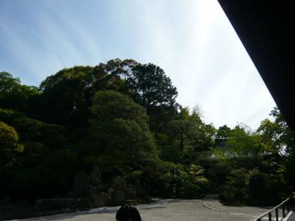 鶴亀の庭園。上の写真の中に鶴と亀がいます!どこでしょう!