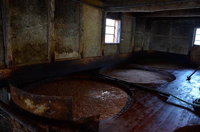 ぷつぷつと、発酵する音が聴こえる。