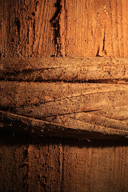 樽の表面には、たくさんの酵母が付いていた。