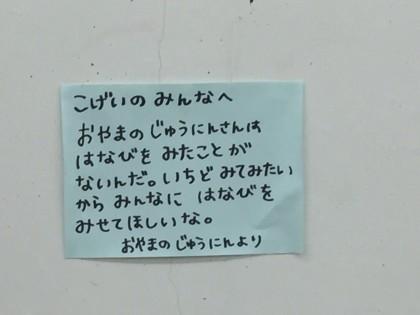 IMG_0008_2