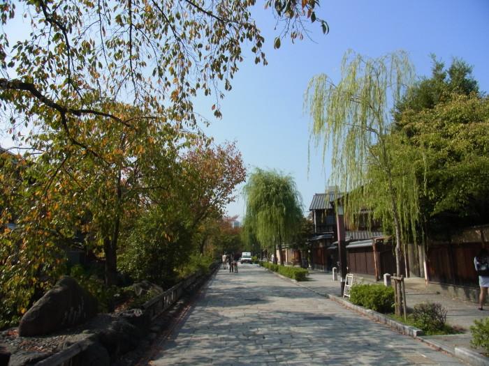 祇園新橋 白川沿いの桜並木は春必見です。