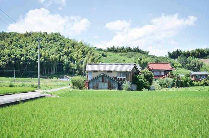 11221039_AyaMiyoshi