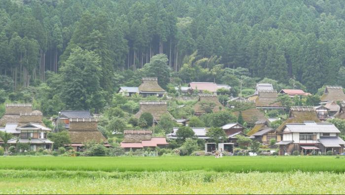 森の京都004