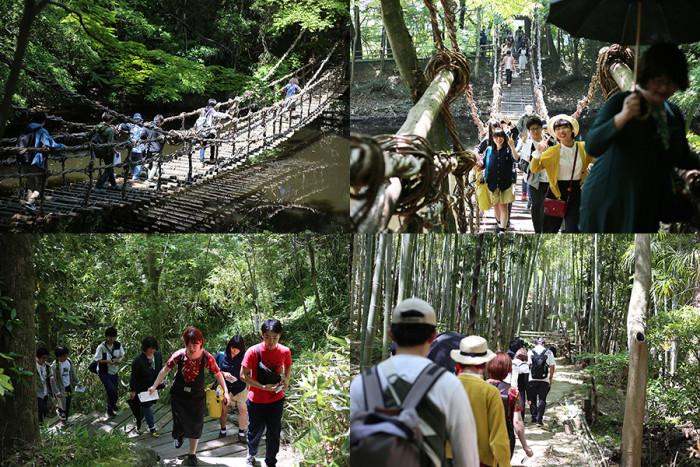 スリル満点、定員20名の「かずら橋」を渡ったり、地図と水の音を頼りに、竹林を歩いたり。