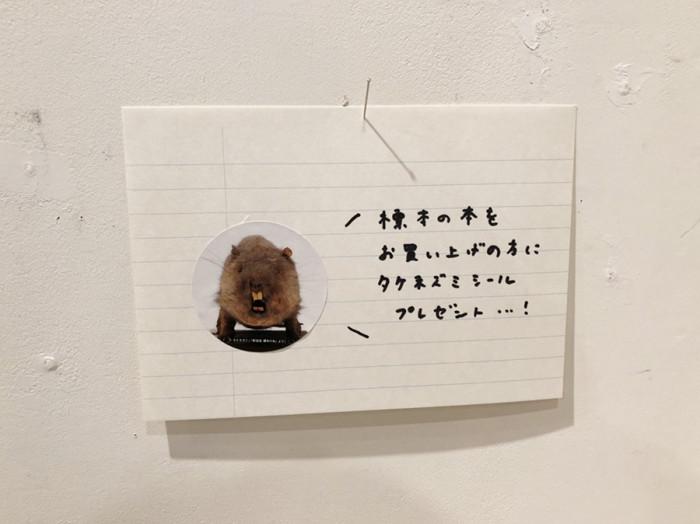 誠光社06