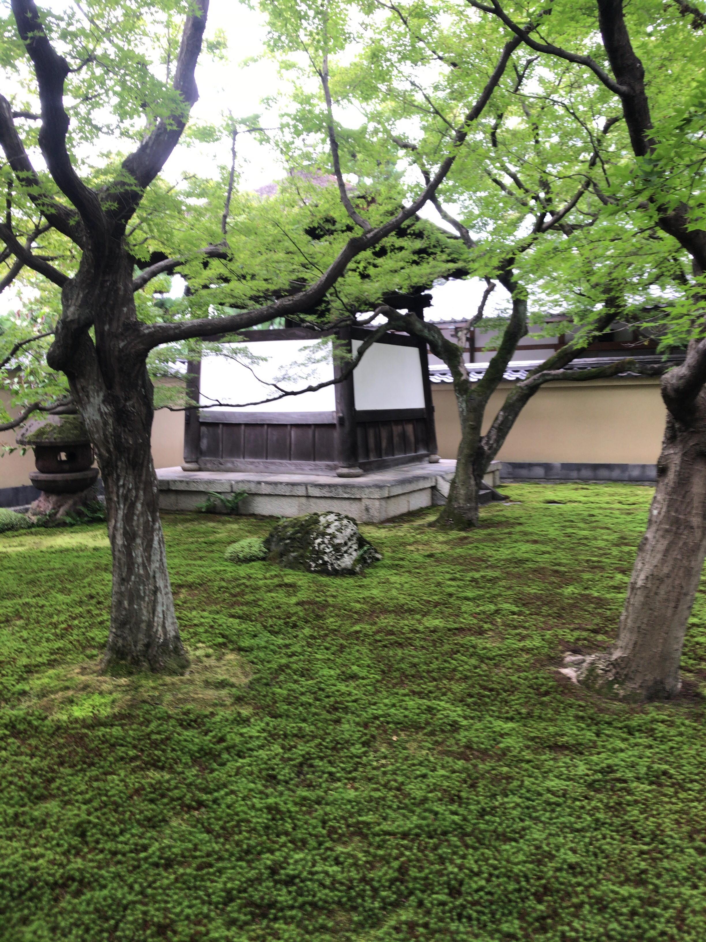 【和の伝統文化コース】「秋の京都ー大徳寺の非公開塔頭三寺院をめぐる」